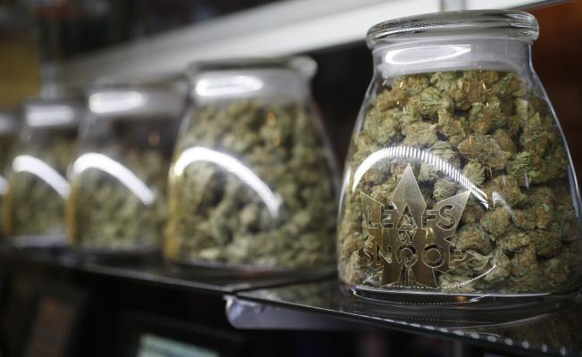 The STATE of State Recreational Marijuana Legalization Efforts in America